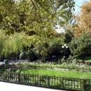 Розарий в Нижнем парке Дендрарий. Сочи.