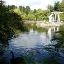 Беседка у пруда. Нижний парк. Дендрарий. Сочи.