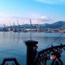 Порт Новороссийск.