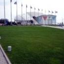 Олимпийский стадион «Фишт» в Сочи.
