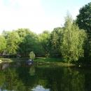Отдых в Воронцовском парке на Юго-Западе Москвы.