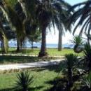 Набережная курорта Пицунда в Абхазии.