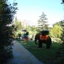 Цветочные композиции Приморского парка в Сочи.
