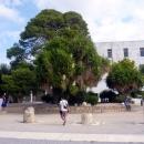 У музея в Тунисе. Карфаген.