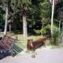 Главный парк развлечений в Сочи – Парк «Ривьера».