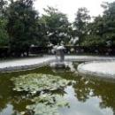 Парк развлечений «Ривьера» в Сочи.