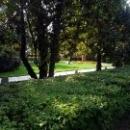 Парк «Ривьера» в Сочи основан в 1898 году.