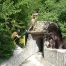 Вход в медвежью пещеру на территории Сафари-парка в Геленджике.