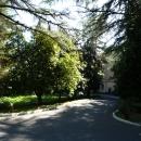 Аллеи санатория Амра. Курорт Гагра в Абхазии.