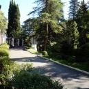 Аллеи дендропарка санатория Амра. Абхазия.