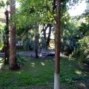 Парк у корпуса номер 2 санатория Амра.