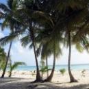 Пальмы, море, белый песок - это Доминикана.