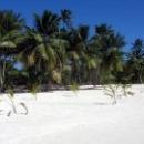 Остров Саона - национальный заповедник.