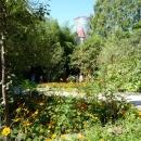 Цветники в парке Дендрарий в Сочи.