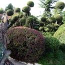 «Заколдованный лес» - самая зеленая тематическая зона Сочи Парка.