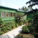 Дача Сталина в Сочи – двухэтажный особняк зеленого цвета.