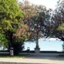 Цветущая Абхазия. Набережная Сухум.