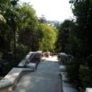 Вид на кварталы Сухума. Абхазия.