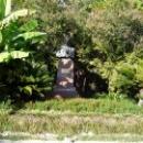 Памятник основателю Ботанического сада. Сухум.