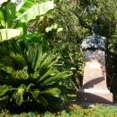 Сухумский ботанический сад. Абхазия.