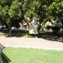 Памятник композитору Римскому-Корсакову в Сочи.