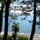 Вид на набережную Сочи из парка имени Фрунзе.