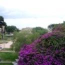 Амфитеатр и Парк в Таррагоне