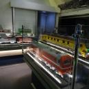 Поезд-музей «РЖД». Макеты электровозов, вагонов.