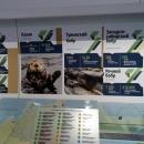 Передвижной выставочно-лекционный комплекс «РЖД». Вагон Экологии. Редкие животные.