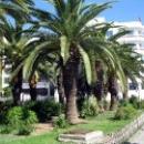 Столица Туниса - город Тунис. Достопримечательности Туниса.