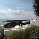 Вид на город Тунис с вершины холма Сиди-Бу-Саида.