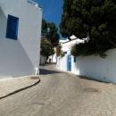 Бело-синий городок Сиди-Бу-Саид в Тунисе.