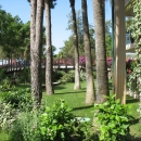Природа отельной зоны Измира. Турция.