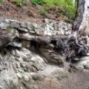 Природа по дороге к водопаду Учан-Су.