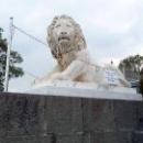 Львы в на территории Алупкинского дворцово-паркового музея-заповедника.