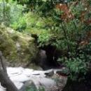 Естественная природа Крыма дополнена уникальными растениями со всего мира.