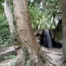 Воронцовский парк - памятник садово-паркового искусства, садовник Карл Кебах.