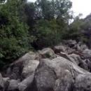 Хаос из камней в Верхнем Алупкинском парке.