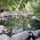 Одно из трех озер в Алупкинском парке.