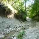 Лесные предгорья у водопадов Геленджика.