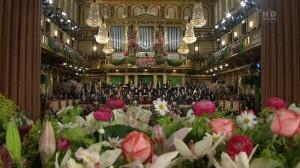 Концерты в Вене