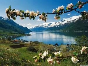 Фото Норвегия