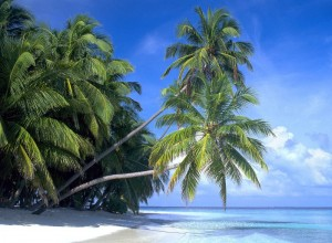 Пляжный отдых на Кубе с ноября по апрель