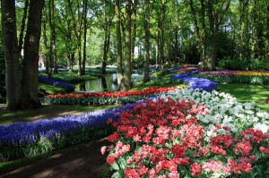 Кекенхоф- уникальный весенний парк мира