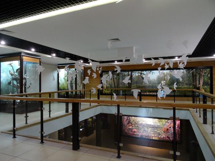 Музей природы в Воронежском заповеднике. Животный и растительный мир.